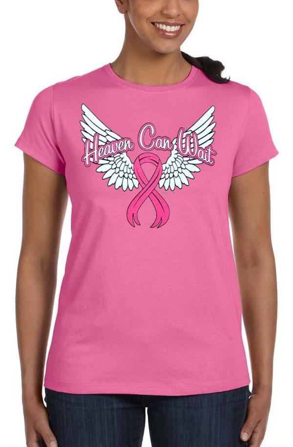 ladies breast cancer awareness t-shirt